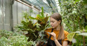 Anastasia Haraz într-o seră cu plante/FOTO: Ecaterina Șalaru