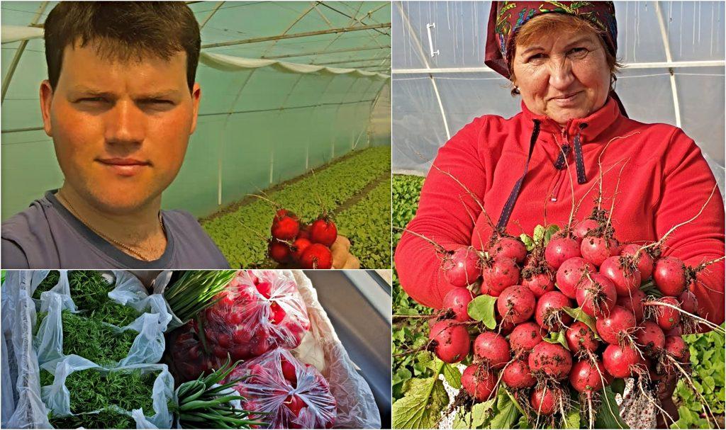 Produsele familiei Terentiev din satul Coșnița