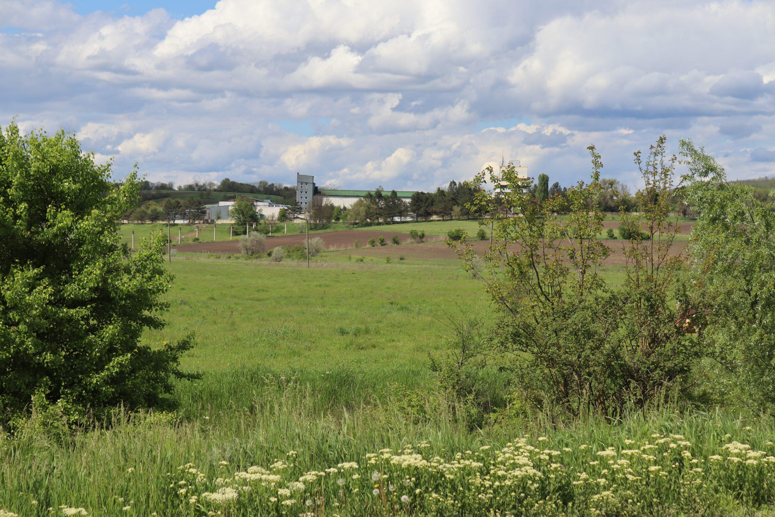 În îndepărtare se vede Fabrica de Vinuri Romănești